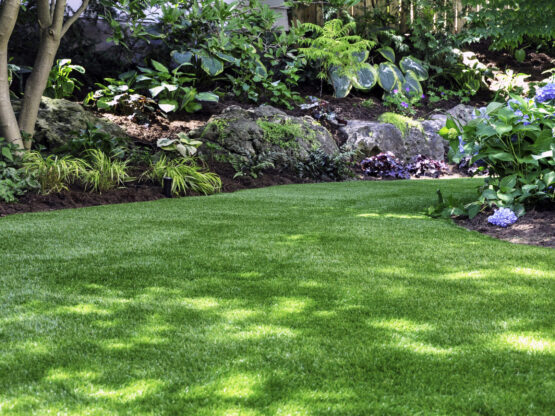 lawn maintenance beaverton